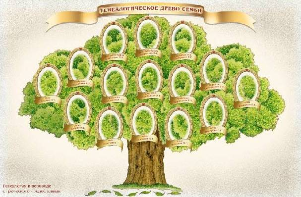 Как сделать генеалогическое древо семьи своими руками